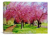 Park Life, Canvas Print