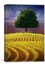 La Mayenne, Canvas Print
