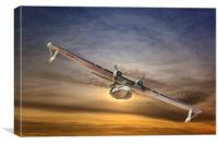 A  PBY Catalina Soars, Canvas Print