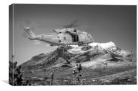 Merlin In the Cuillins, Canvas Print