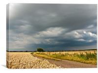 Summer Storm, Canvas Print