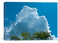 Blue Sky Convection, Canvas Print