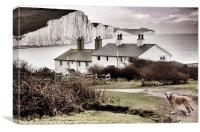 Coastal Cottages & Ted, Canvas Print