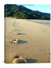 Footprints, Canvas Print