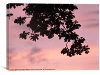 Oak Sunset, Canvas Print