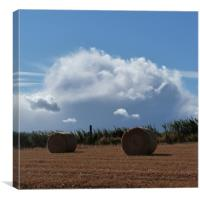 Straw Bales, Canvas Print
