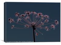 Floral Art 1, Canvas Print