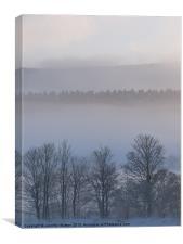 Winter Mist 1, Canvas Print