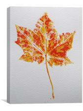 Maple leaf print, Canvas Print