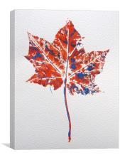 Maple leaf in red and blue, Canvas Print