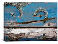 Blue Lichen, Canvas Print