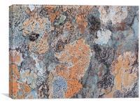Lunar Landscape, Canvas Print