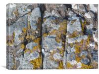 Rock of Ages 2, Canvas Print