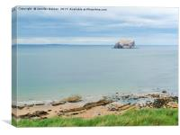 Bass Rock from North Berwick, Canvas Print