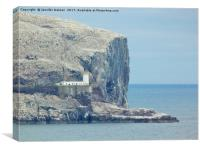 Lighthouse on the Bass Rock, Canvas Print