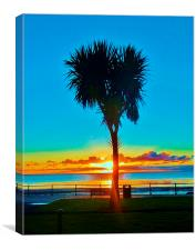 sunrise in Douglas, Canvas Print