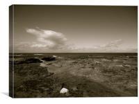 Black and white beach, Canvas Print