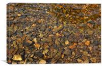 Pebbles through water, Canvas Print