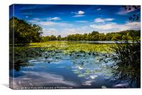 Osbournes pond, Canvas Print