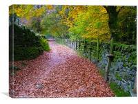 Lake District Path, Canvas Print