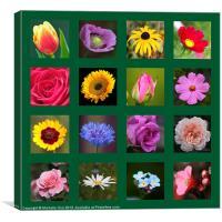 Floral Squares, Canvas Print