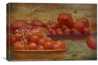 Tomatoes from around the World, Canvas Print