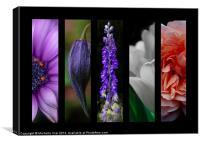 Montage Floral, Canvas Print