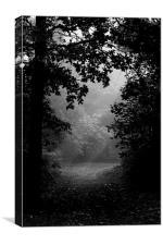 Darkness, Canvas Print