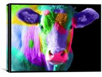 Colourful Cow, Canvas Print