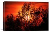 Norfolk summer sunset, Canvas Print