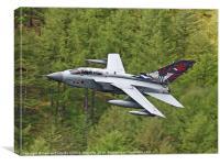 617 Squadron`s Tornado GR4 - The Derwent Dam