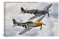 A Close Pass - Dunsfold 2014, Canvas Print