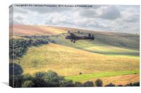Thumper Flies Down The Coombes Valley, Canvas Print