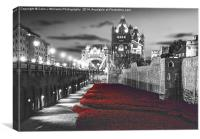 Tower bridge and the Ceramic poppies BW, Canvas Print