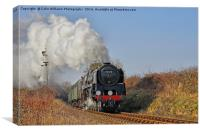 92212 Approaches Ropley 1, Canvas Print