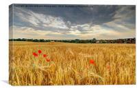 Winter Barley 2, Canvas Print