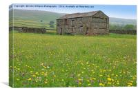 The Summer Meadows of Swaledale, Canvas Print