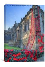 The Knitted poppies of the Thirsk Yarnbombers, Canvas Print