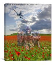 We Salute The Few, Canvas Print