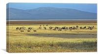 Wildebeest on Lake Manyara, Canvas Print