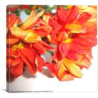 Orange Bouquet, Canvas Print