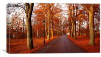 Red Woods, Canvas Print