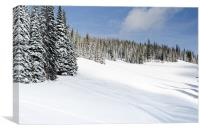 SILVERSTAR MEADOW snow covered alpine meadow silver star, Canvas Print