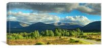 Summer In The Cairngorms, Canvas Print