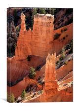 Bryce Canyon National Park, Utah, North America, Canvas Print
