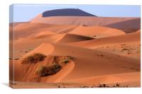Sand Dune Sculpture  , Canvas Print