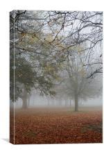 Foggy Richmond, Canvas Print