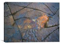 Kimmeridge Rocks 2, Canvas Print