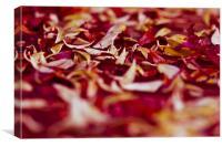 Autumn Chaos, Canvas Print