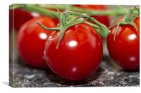 Red Cherry Tomatos, Canvas Print